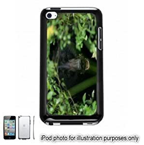 Black Bear In Forest Photo Apple iPod 4 Touch Hard Case Cover Shell Black 4th Generation