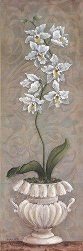 Lavish Orchids II by Angela Ferrante - 12x36 Inches - Art Print Poster