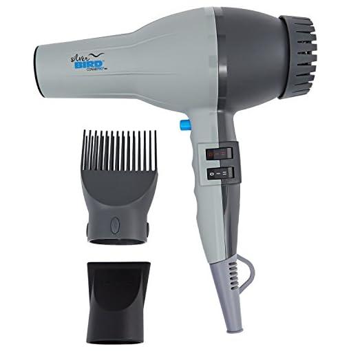 conair pro - 41i 2BvFrUs3L - Conair Pro Silver Bird Hair Dryer SB307W