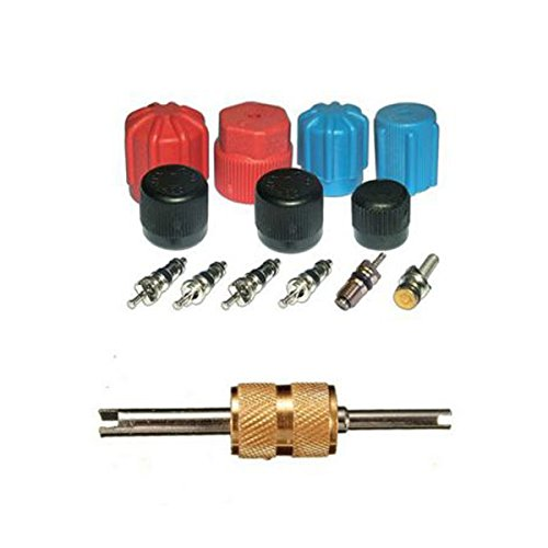 GVDOR AC A//C System Cap /& Valve Service Air Conditioning System Sea Kit+Valve Core Remover-Installer Tool