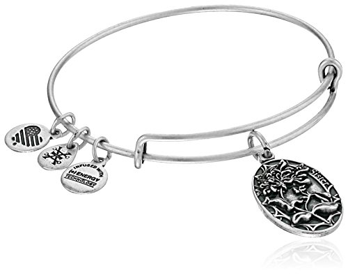 Alex Ani Because Expandable Bracelet