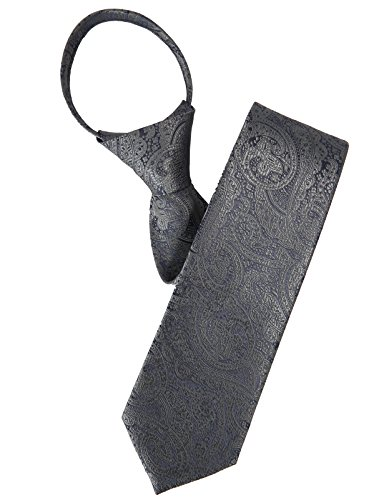 H2H Mens Comfortable Zipper Neck Tie Paisley Patterned Of Various Colors GRAY NONE (KMANT0118) (Paisley Grey Tie)