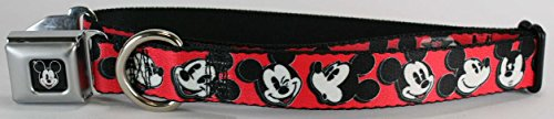 Buckle Down Mickey Mouse Winking dog collar Large 1 X 15-26 inches WDY098-L