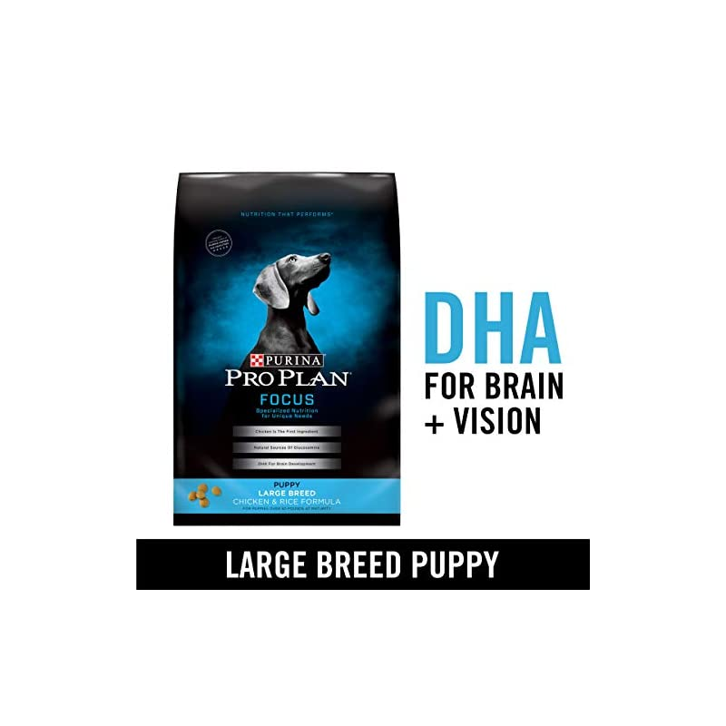 dog supplies online purina pro plan large breed dry puppy food, focus chicken & rice formula - 34 lb. bag