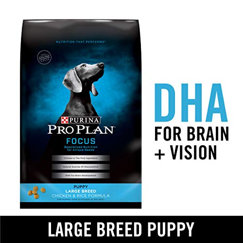 Purina Pro Plan Large Breed Dry Puppy Food, FOCUS Chicken & Rice Formula - 34 lb. Bag (Puppy Food For Sensitive Stomachs Large Breed)