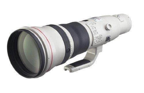 Canon 単焦点超望遠レンズ EF800mm F5 6L IS USM フルサイズ対応
