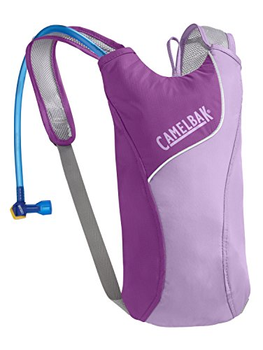 CamelBak Kid's 2016 Skeeter Hydration Pack, Sheer Lilac/Purple Cactus -
