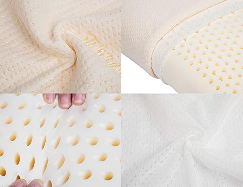 0ac86ae757d MODONE Natural Foam Talalay Latex Bed Pillows for Sleeping with Hypoallergenic  Memory Pillow
