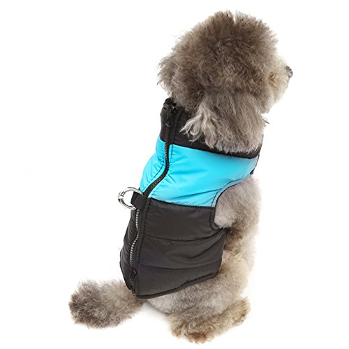Alfie Pet by Petoga Couture - Stormy Waterproof Vest Coat - Color: Blue, Size: XXL -