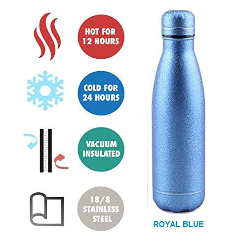 Stay Hydrated Vacuum Insulated Double Wall Bottle for Hot & Cold 16.9 oz (Royal - Thermos Ounce 16.9