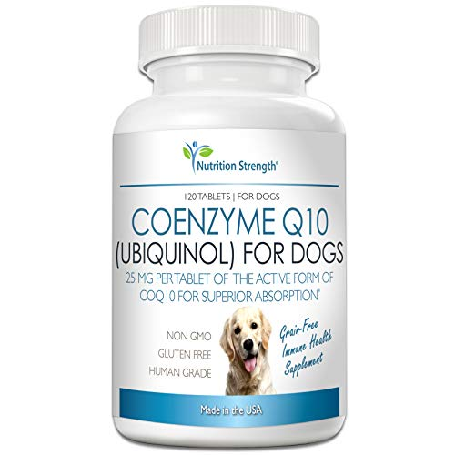 Nutrition Strength Coenzyme Q10 for Dogs Grain-Free Supplement, Ubiquinol - The Electron-Rich Form of CoQ10, Promotes Heart Health, Cognitive and Energy Support for Dogs, 120 Chewable Tablets (Dog Tablets 120)
