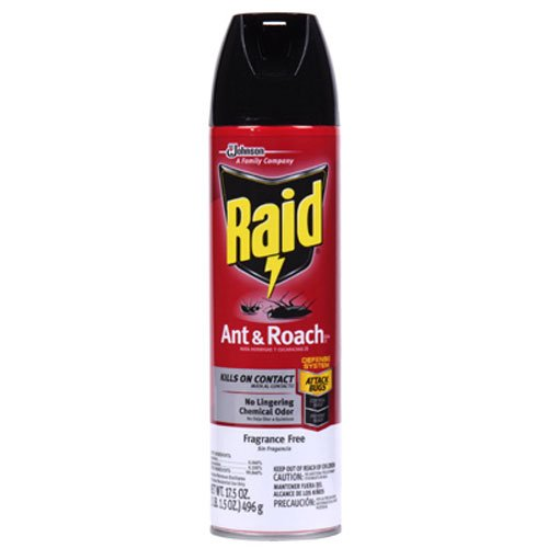 Raid Ant & Roach Killer Insecticide Spray, 17.5 oz-2 pk