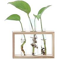SODIAL Nordic Test Tube Glass Vase Hydroponic Vase Elegant Tabletop Vase for Water Planting Flower Arrangement Decoration Gift