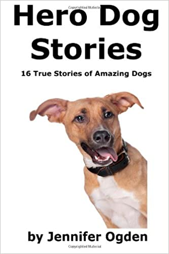 amazing dog stories