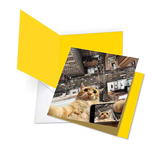 Customised Stationery - Cat Taking Selfies - Funny Cat Happy Birthday Card with Envelope (Extra Large 8.25 x 9.75 Inch) - Pet Animal Phone Photo, Cityscape Stationery Notecard for Birthdays - Kitten Bday Greeting JQ4953ABDG