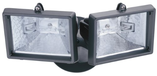 Lithonia Lighting 2 Lamp Outdoor Floodlight - 2