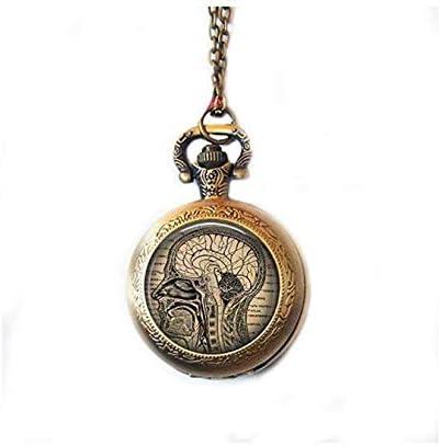 Collar de reloj de bolsillo anatómico para el cerebro, colgante de reloj de anatomía cerebral humano, collar de reloj de regalo neurologista, biología, regalo para estudiantes médicos