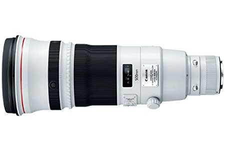 The 8 best used canon 500mm lens for sale