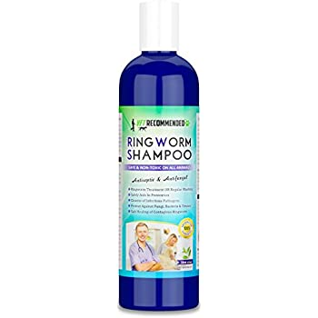 Amazon Com Davis Miconazole Pet Shampoo 12 Ounce Cat Shampoo
