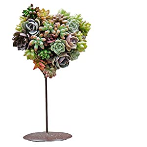 Iron Heart Shaped DIY Succulent Flower Wreaths Holder (Without Plant) 85