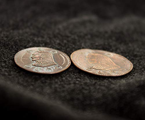 Mistborn Coin - Vin and Kelsier's Flattened Clip