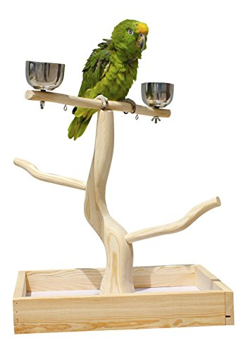 Birds LOVE Tabletop T-Stand Deluxe Play Gym Bird Stand for Cockatiels Conures African Greys Amazons-Includes 2 top perches Easy Assembly Easy to Clean this stand by Birds LOVE