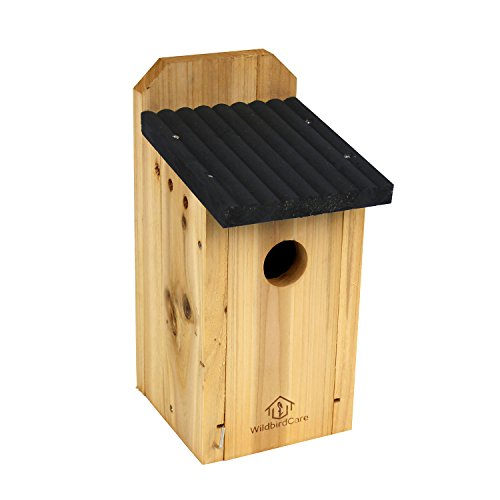 WildBird Care Cedar Bluebird House Wooden Hanging Tray Birdhouse Wood Nesting Box BCH2A