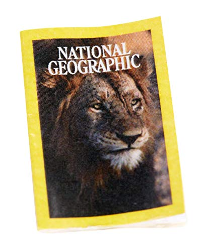 Barbie Photojournalist Doll, Brunette with Lion Cub, Camera and Magazine Cover, Inspired by National Geographic