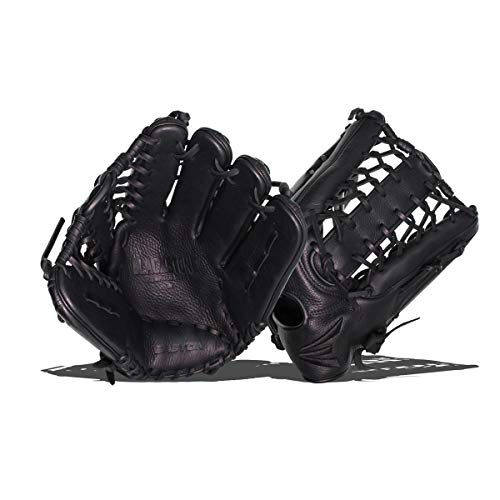 Best Baseball Outfielders Mitts