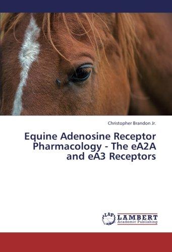 Download Equine Adenosine Receptor Pharmacology - The eA2A and eA3 Receptors pdf epub