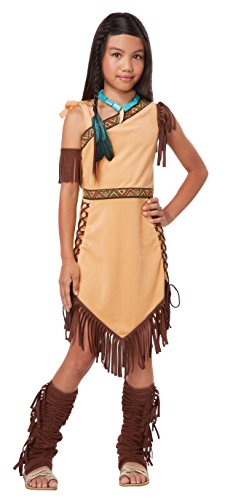 California Costumes Native American Princess Child Costume, Brown, Medium