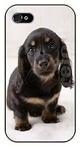 iPhone 5 / 5s Black pug - black plastic case / dog, animals, dogs