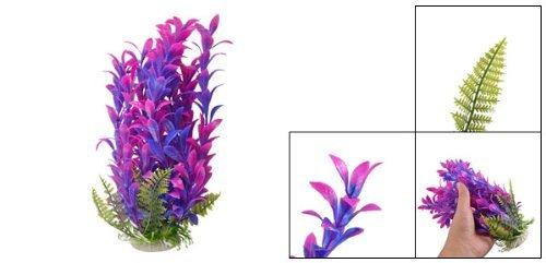 Amazon.com : eDealMax 9.8 Altura de cerámica de plástico Base Fish Tank Planta Fucsia púrpura : Pet Supplies