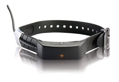 SportDOG Brand TEK 1.0 Add-a-Dog GPS Tracking Only Collar TEK-V1L