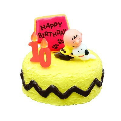 Amazoncom Snoopy birthday cake 4 Snoopy and Charlie Brown