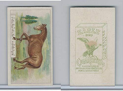 B116-151 BAT Eagle Cigarettes, Animals & Birds, 1912, 31 Horse