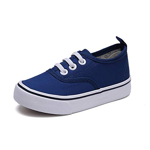 Price comparison product image Super explosion Kids Girl's Fashion Sneakers Casual Sports Shoes Comfortable Athletic Sneakers(Blue 6 M US Toddler)