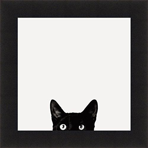 Curiosity by Jon Bertelli 19x19 Black & White Cat Peeking Kitten Pet Framed Art Print (Black Cat Art)