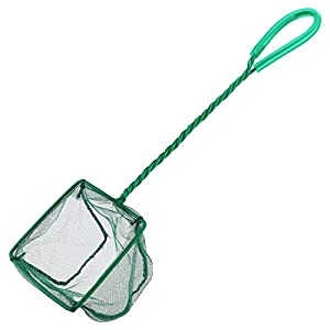 Pawfly 4 Inch Aquarium Net Fine Mesh Small Fish Catch Nets with Plastic Handle - Green 6