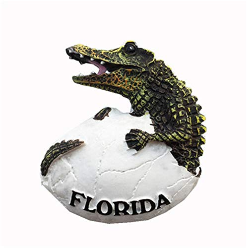 (Refrigerator Magnets Resin 3D Funny American Florida Crocodile USA City Travel Souvenirs Fridge Stickers Magnetic Fridge Magnet for Whiteboard Home Kitchen Decoration Accessories Arts Crafts Gifts)