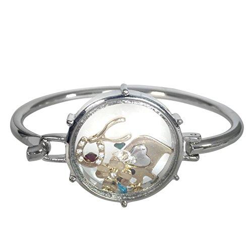 Floating Charms under Glass Theme Silver Tone Hook Bangle Bracelet (Lucky Elephant horseshoe Clover) (Bracelet Horseshoe Star)