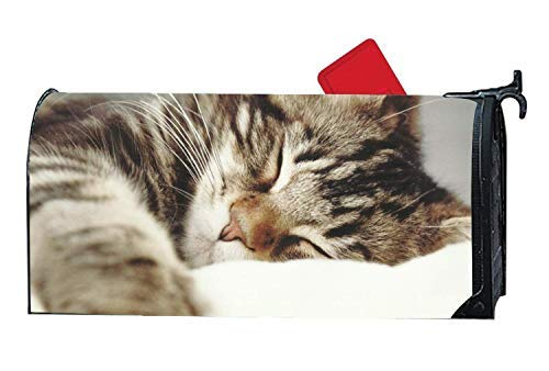 Tollyee Personalized Mailbox Makover Cover Small Beautiful Cat Sleeping Mailbox Covers Garden,Home,Yard Magnetic Magnetic Mailbox Cover 9