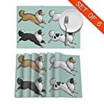CYEfuzhuang Running Rough Collie Dog 6-Piece Set of Placemats Heat Resistant Table Place Mats Washable Kitchen Dinner 12 x 18 Inch 4