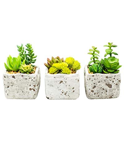 Artificial Succulent Plants with Stylish Cement Planter. Premium Home Decor for Easy No-Maintenance Greenery. Handcrafted Farmhouse Rustic Look for High End Appearance. Fake Cactus in Pots (3 Pack)