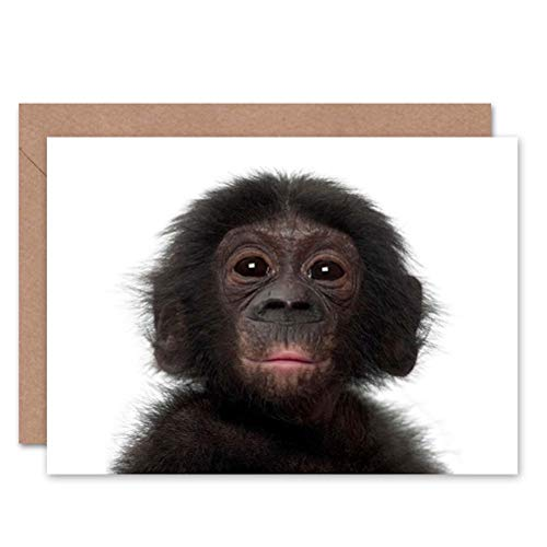 Wee Blue Coo Animal Bonobo Chimp Chimpanzee Baby Young Birthday Blank Greetings Card
