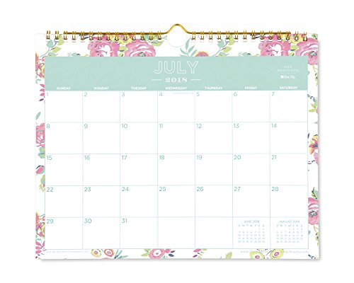 Day Designer for Blue Sky 2018-2019 Academic Year Monthly Wall Calendar, Twin Wire Binding, 11