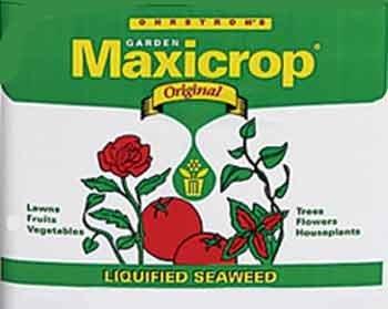 Seaweed Fertilizer, Quart
