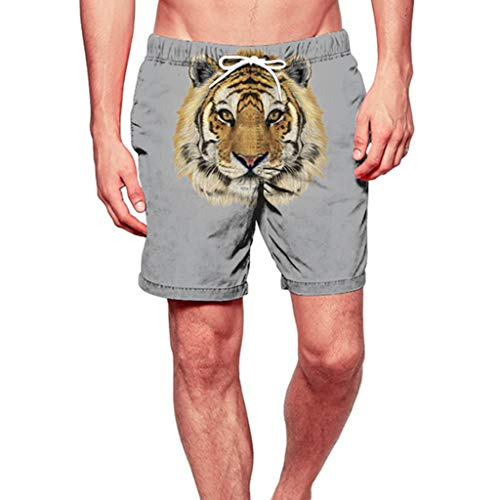 ANJUNIE Men's Floral Swim Shorts Trunks Quick Dry Beach Surfing Running Swimming Watershort(Gray,L)