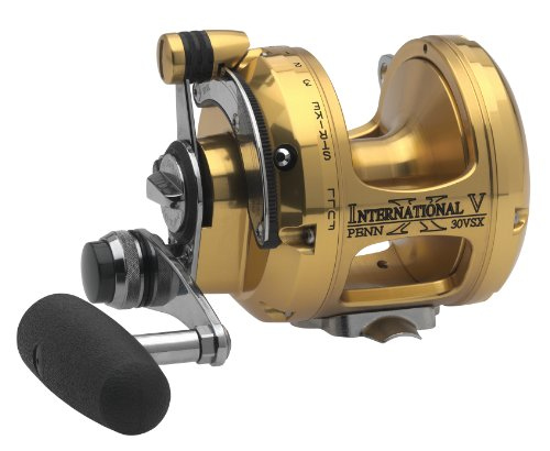 Penn International 50VSX Extreme 2-Speed Fishing Reel