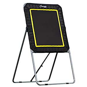 Champion Sports Deluxe Lacrosse Rebound Targets: Ball Return Bounce Back Net Set for Professional, College and Grade School Training, and Drills – Practice Offense, Passing Skills, and Shooting Accuracy